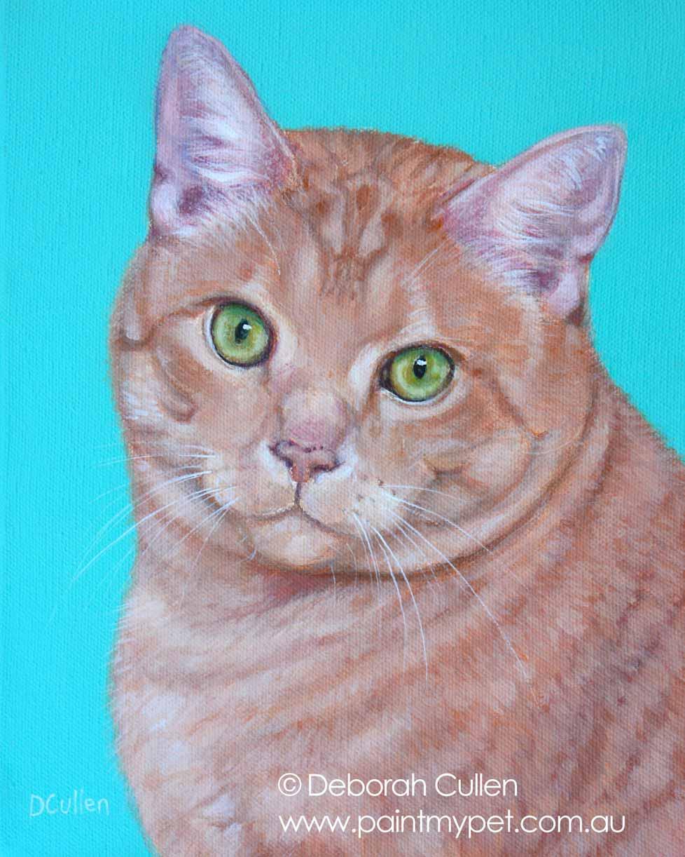 Cat Portraits - Realistic Cat Pet Portraits in Oils and Pencil
