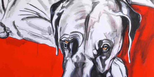 Great Dane painting - paintmypet