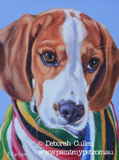 Beagle pet portrait