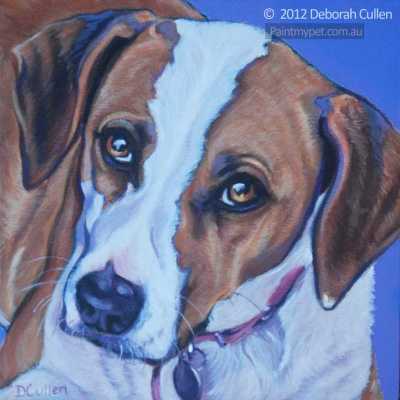 Pet Portrait of a Beagle