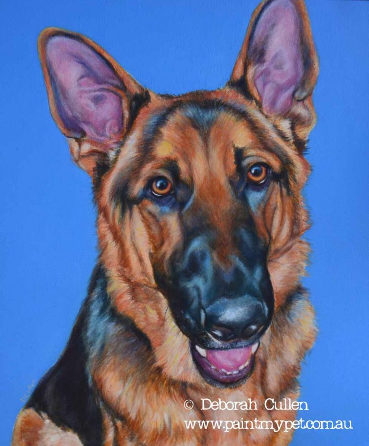 German Shepherd pet portrait