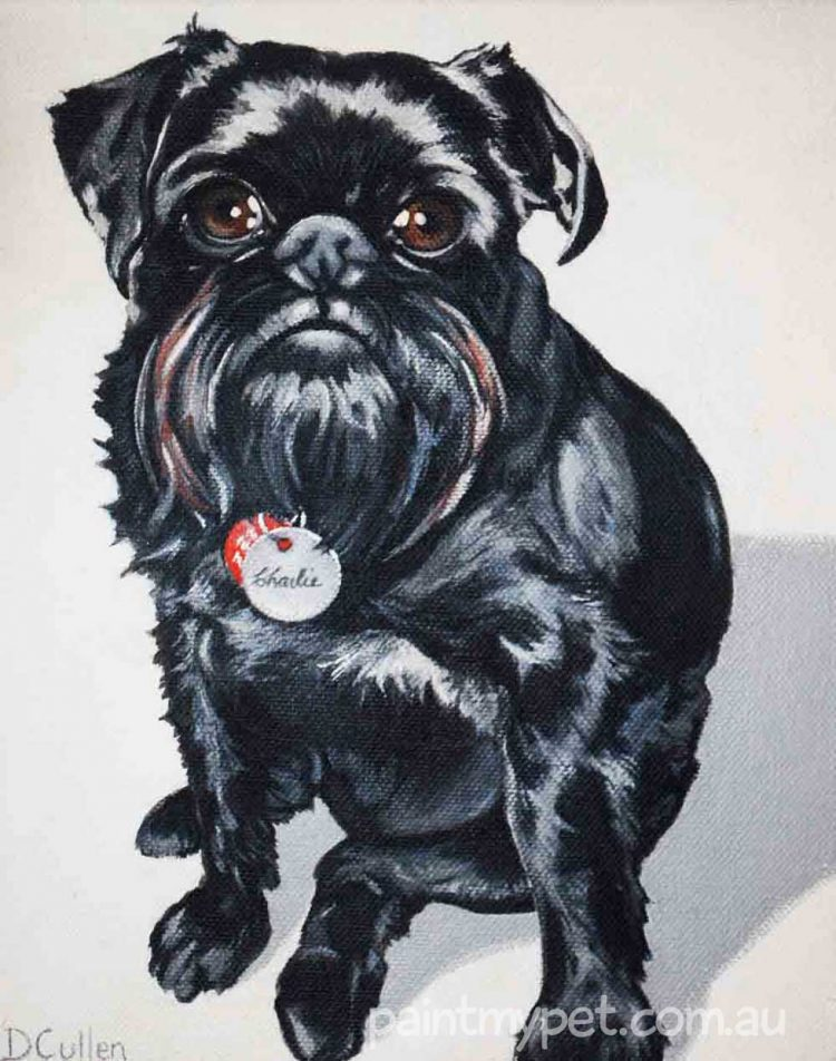 dog portrait, paintmypet