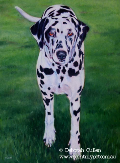 Dalmation pet painting