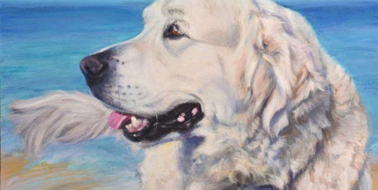 Golden Retriever at the beach painting