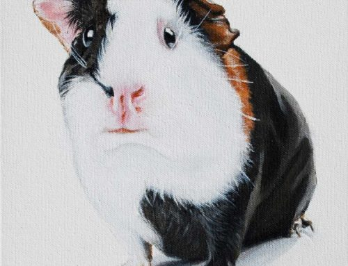 Harry – Guinea Pig Painting 2