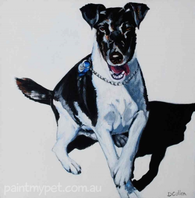 Fox Terrier Pet Portrait