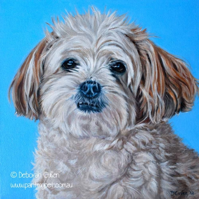 Pet portrait of a Shih tzu