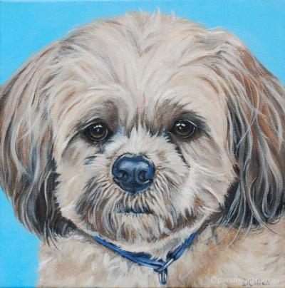 Shi tzu portrait - paintmypet