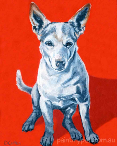 Mini Fox Terrier Dog Portrait