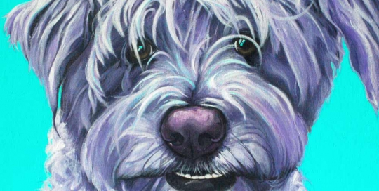 Schnoodle painting - paintmypet