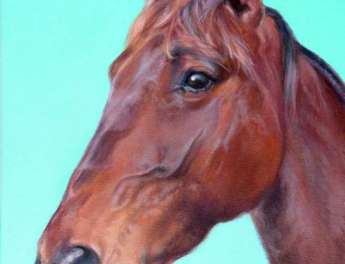 Comet – Bay Horse Painting