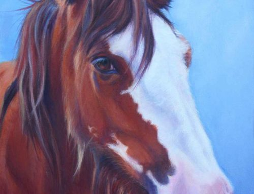 Hayley – Clydesdale Horse Painting