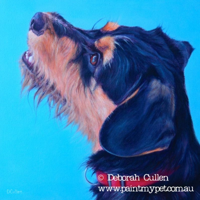 Mini Schnauzer X Cavalier pet painting
