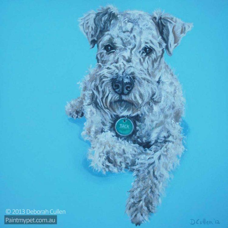 Dog Portrait of a Lakeland Terrier