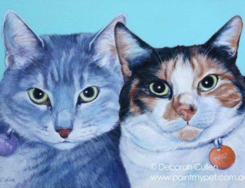 Jasmine & Daisy – Cat Portrait