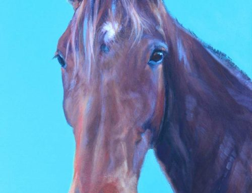 Kane – Bay Horse Painting