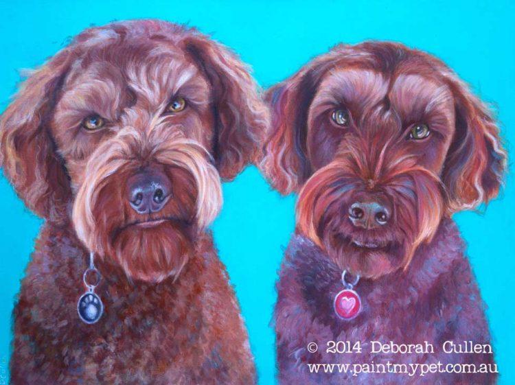 Labradoodle pet portrait