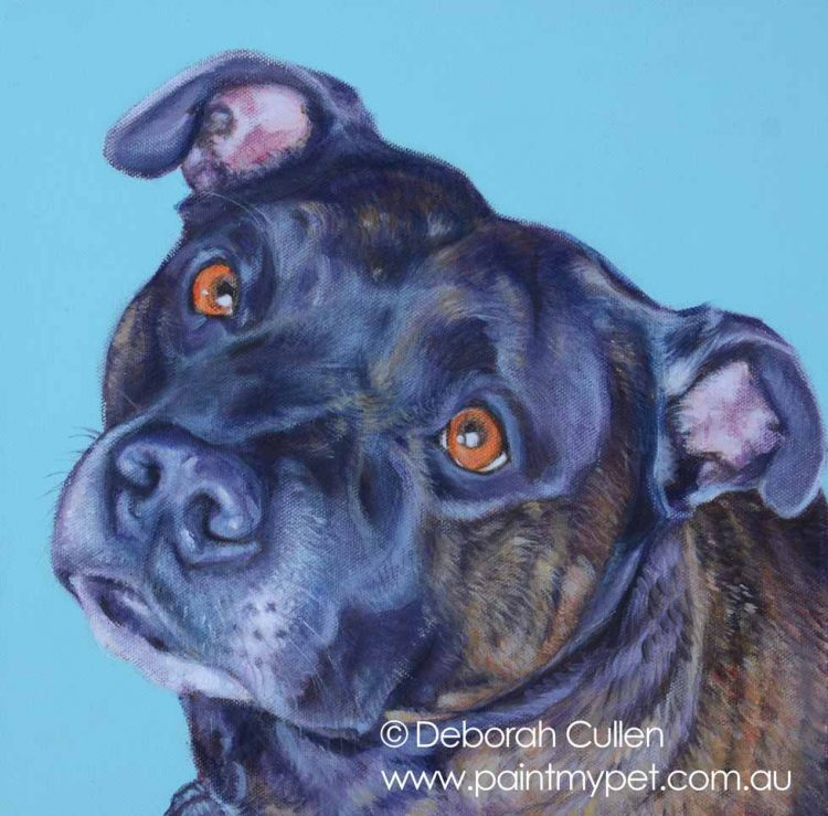 Brindle Staffordshire Bull Terrier Painting