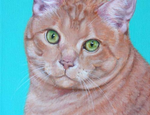 Thomas – Ginger Cat Portrait