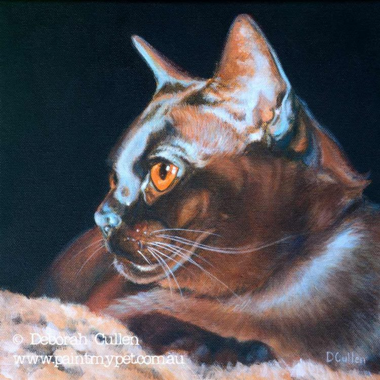 Burmese cat painting