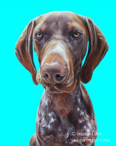 German Shorthaired Pointed Dog Portrait Painting