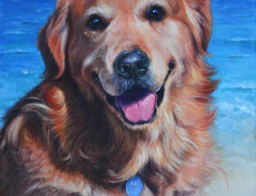 Max – Golden Retriever Dog Portrait