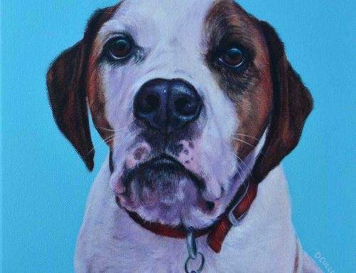 Paddy – Beagle X Dog Portrait Painting
