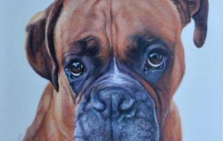 Archie - Boxer Dog Portrait Painting