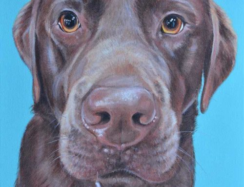 BARNEY – CHOCOLATE LABRADOR DOG PORTRAIT