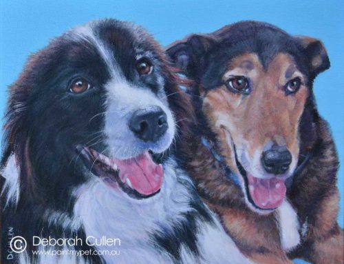 DUXTON (BORDER COLLIE) & ZIGGY (LURCHER X) DOG PORTRAIT