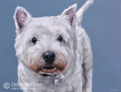 Sydney – West Highland Terrier Portrait