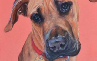 Doug Great Dane x Bull Mastiff Painting
