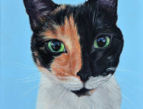 Edi – Chimera Cat Portrait Painting