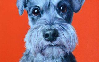Miniature Schnauzer dog painting