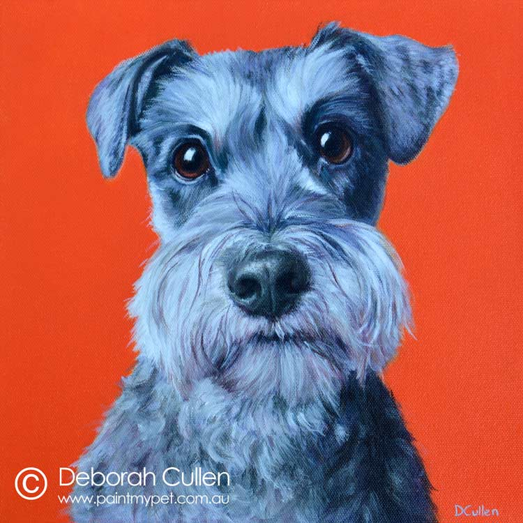 Miniature Schnauzer dog painting