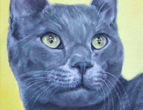 Nobu – Cat Portrait Painting