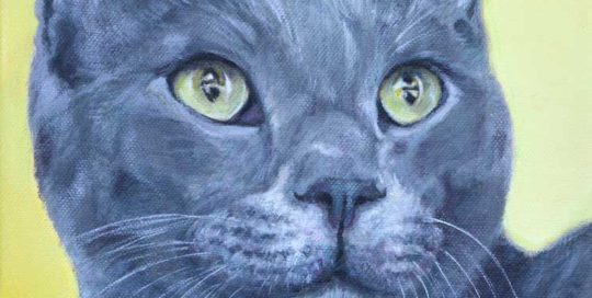 Painting of a grey cat