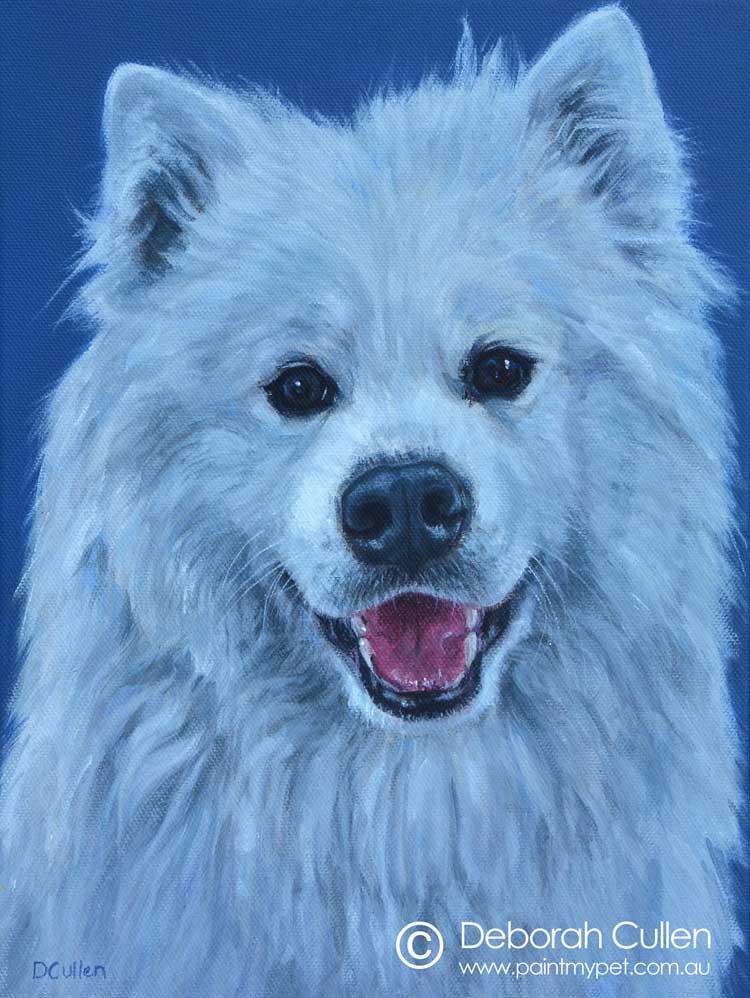 Dog Portrait of a white Samoyed