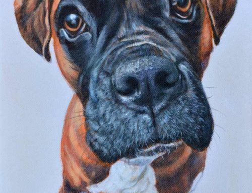 Buddy – Boxer Dog Portrait Painting