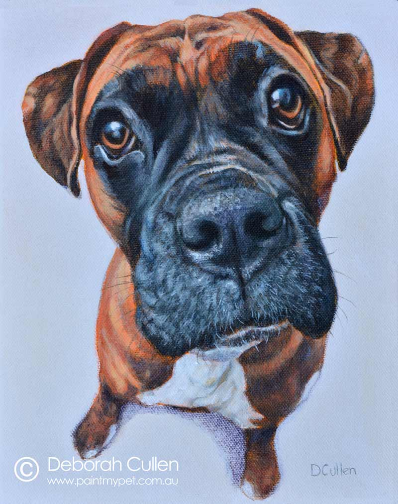 Painting of Buddy the Boxer
