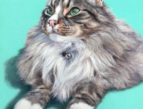 Beanie – Long Haired Cat Portrait