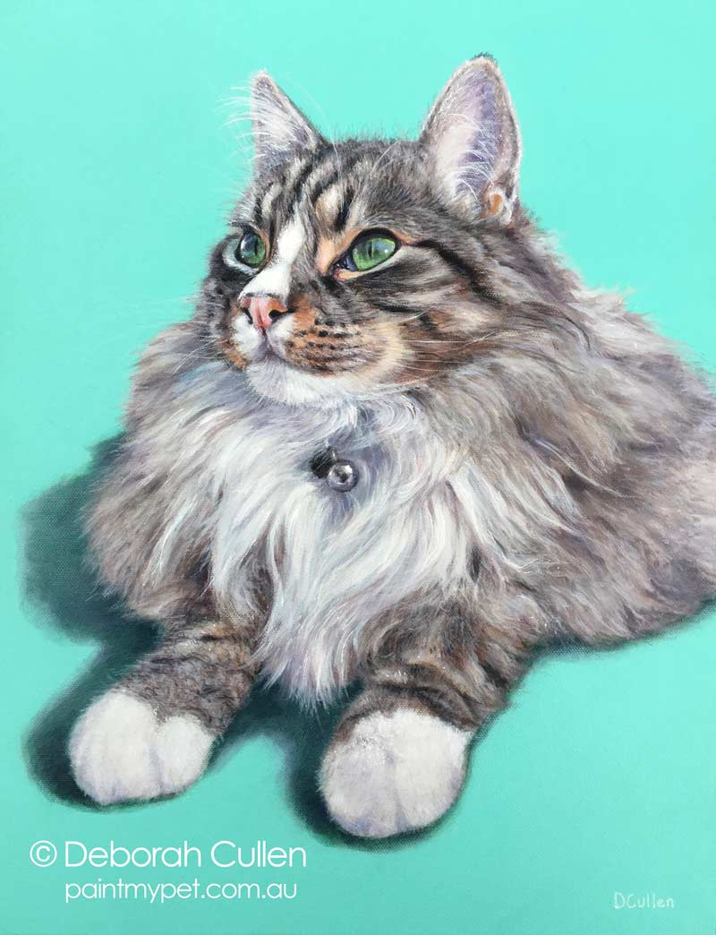 Acrylic long haired cat portrait