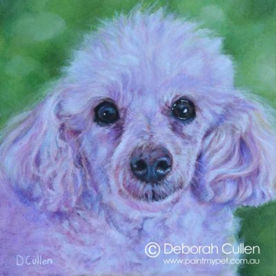 White Toy Poodle painting