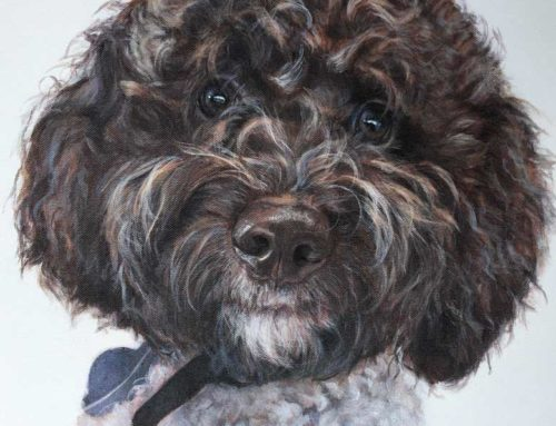 Hugo – Lagotto Romagnolo Dog Portrait Painting