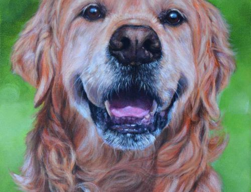 Dohko – Golden Retriever Dog Portrait Painting