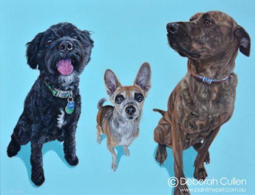 Loki – Cavoodle, Sabrina – Chihuahua x Mini Fox Terrier & Arty – Mastiff x Rottweiler Dog Portrait Painting