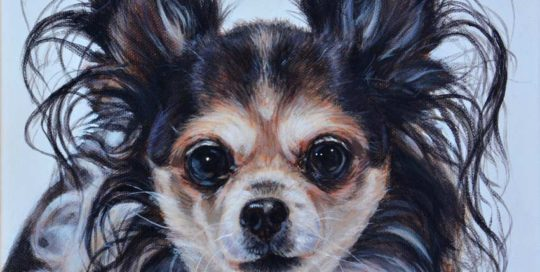 Painting of a Long Haired Chihuahua