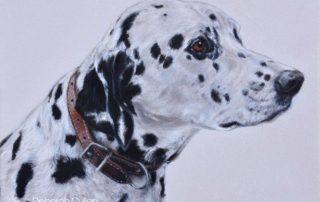 Dog Painting of a Dalmatian Dog