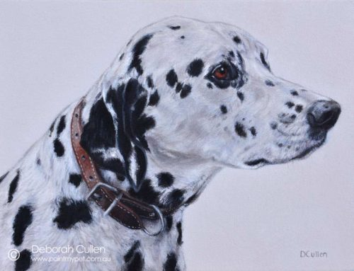 Cooper – Dalmatian Dog Portrait Painting