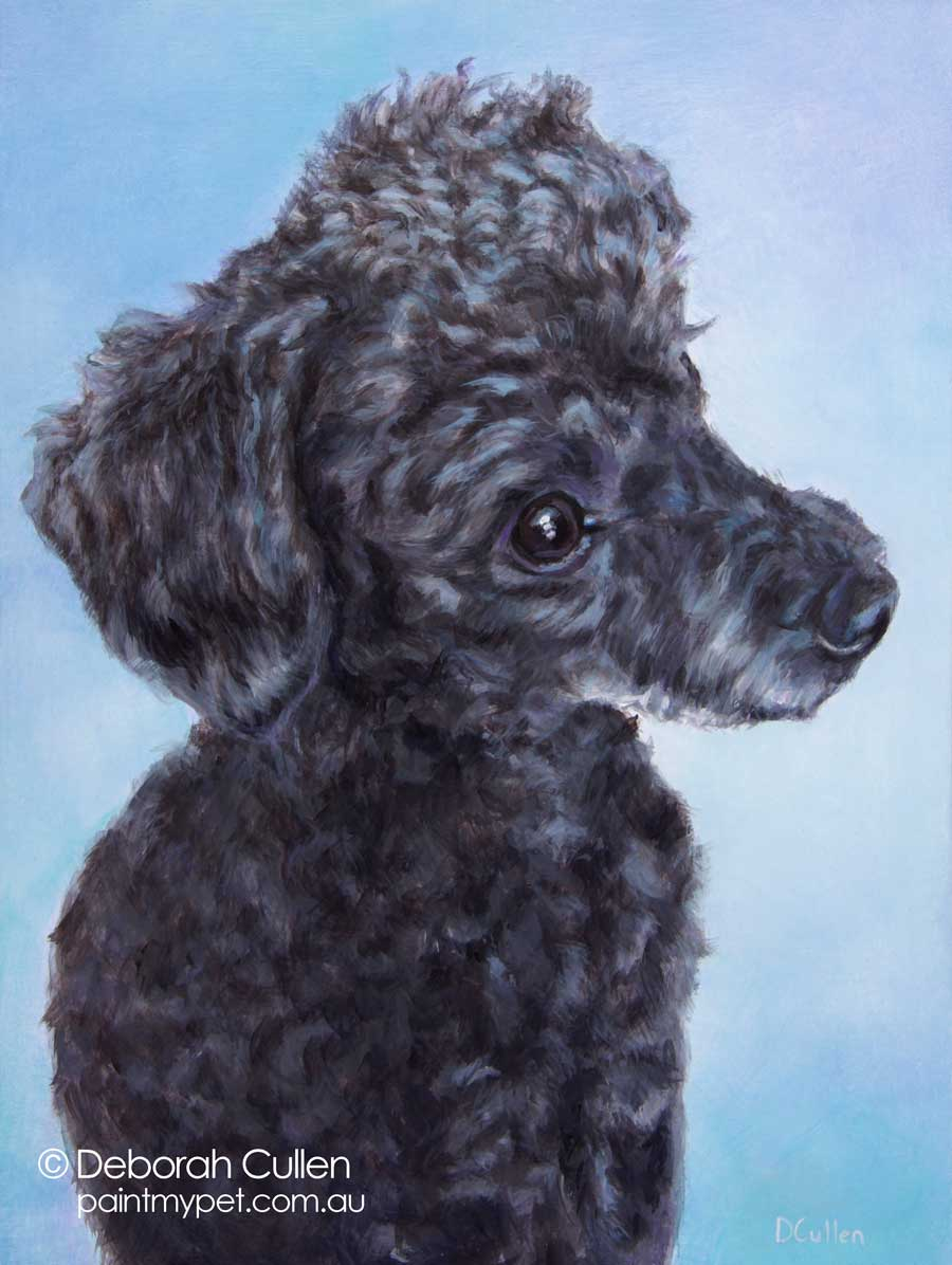 Toy Poodle painting